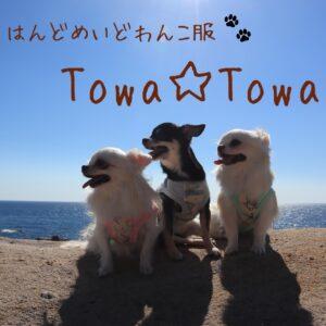 Towa☆Towa
