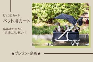 【プレゼント企画】ペット用カートを1名様に!